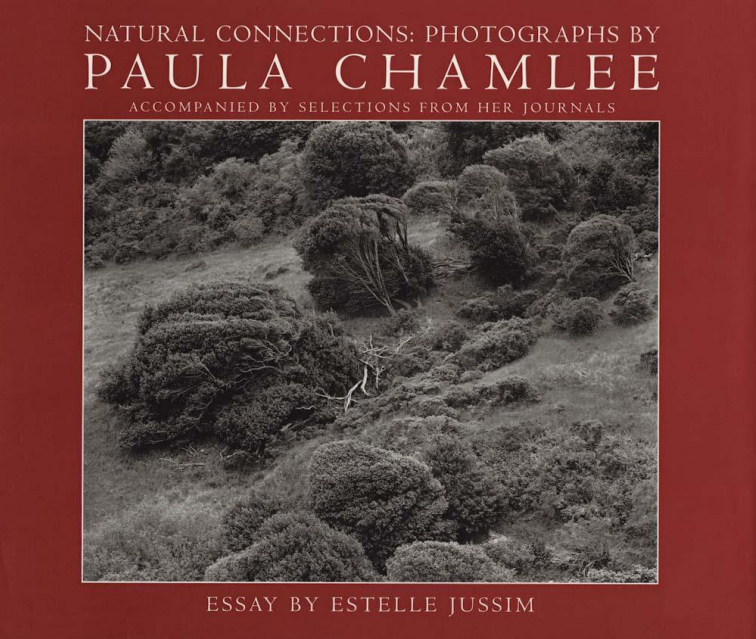 Cover of Paula Chamlee, Natural Connections