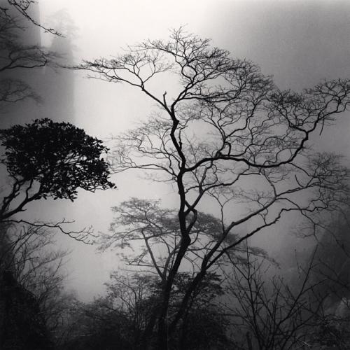 Huangshan mountains, Study 44, Anhui, China. (c) Michael Kenna, 2010.