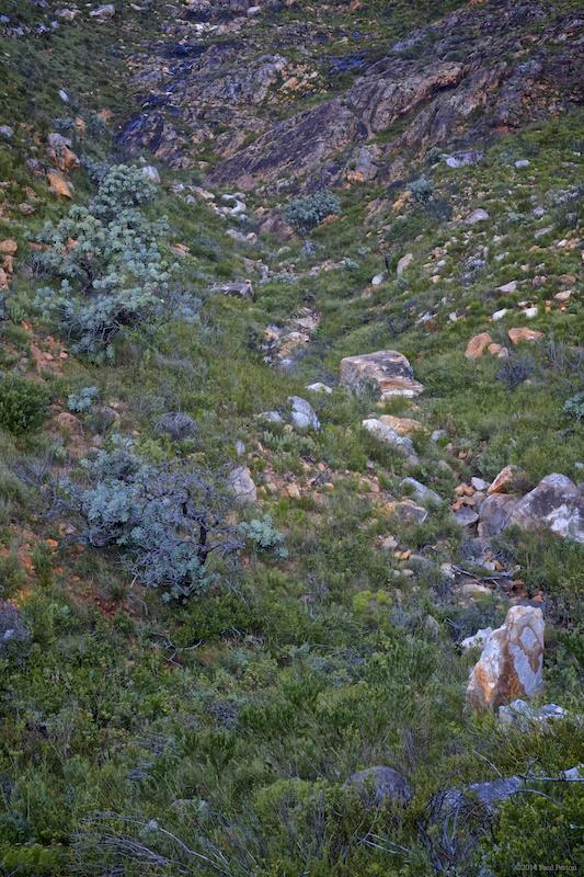 The elusive ravine; not quite right yet