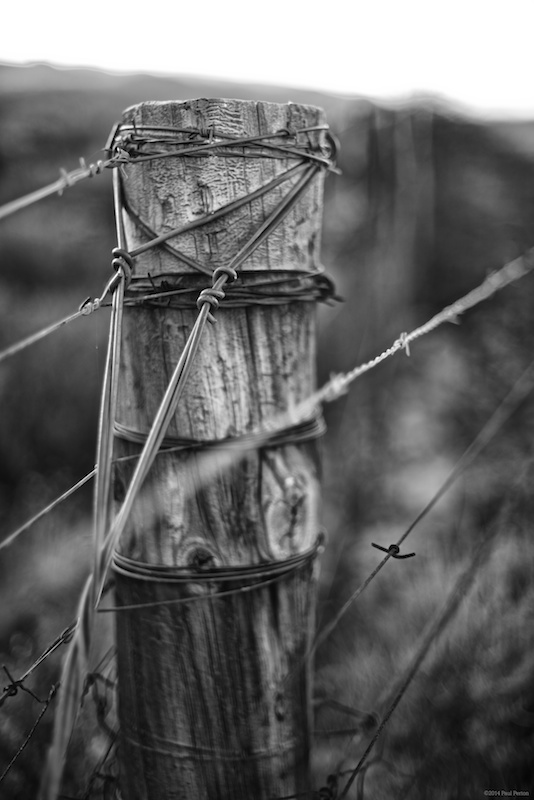 Fence post and gentle bokeh - f1.4 @ 1/250s